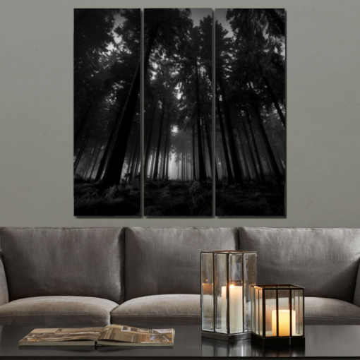 BlackKaps.com Black Kaps - Dark Forest by Nic Angel Print on Acrylic Triptych - Placed